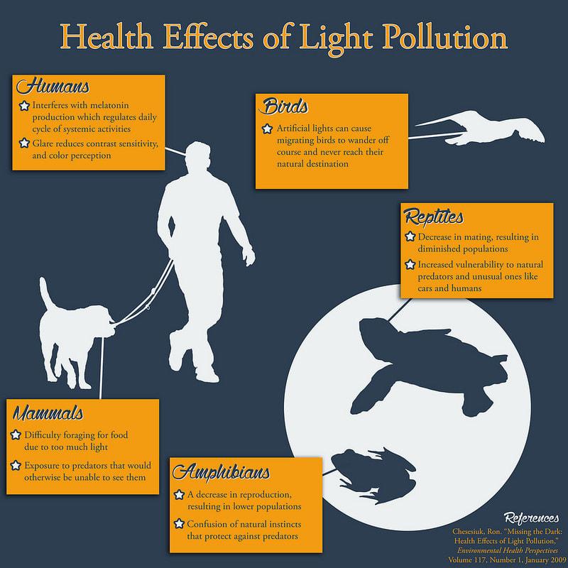 Light Pollution Effects - DARK SKY DEFENDERS
